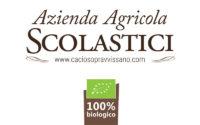 Logo_Scolastici